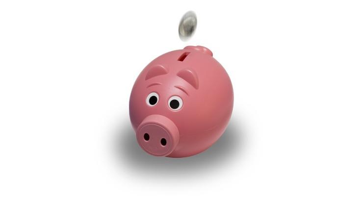 piggy-bank-1056615_960_720.jpg
