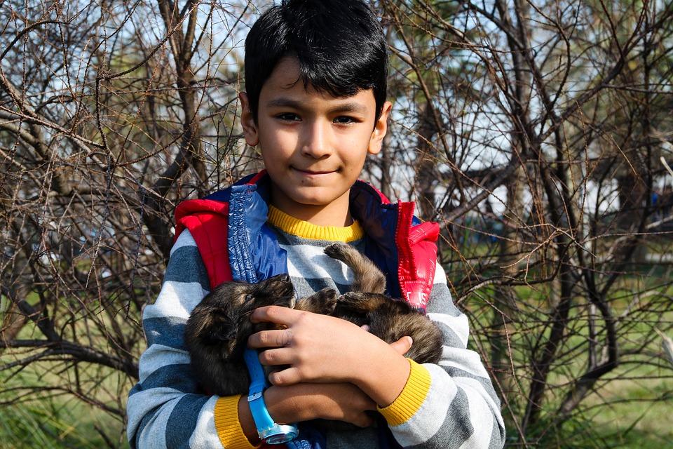 boy-and-dog-1876076_960_720