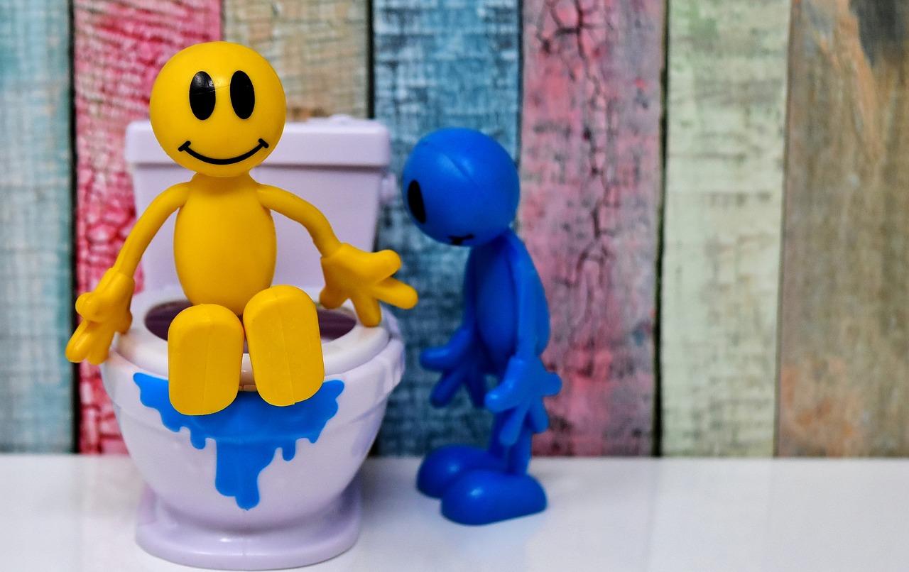 toilet-3298205_1280.jpg